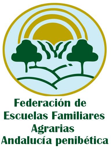 4_derecha_final_Federación