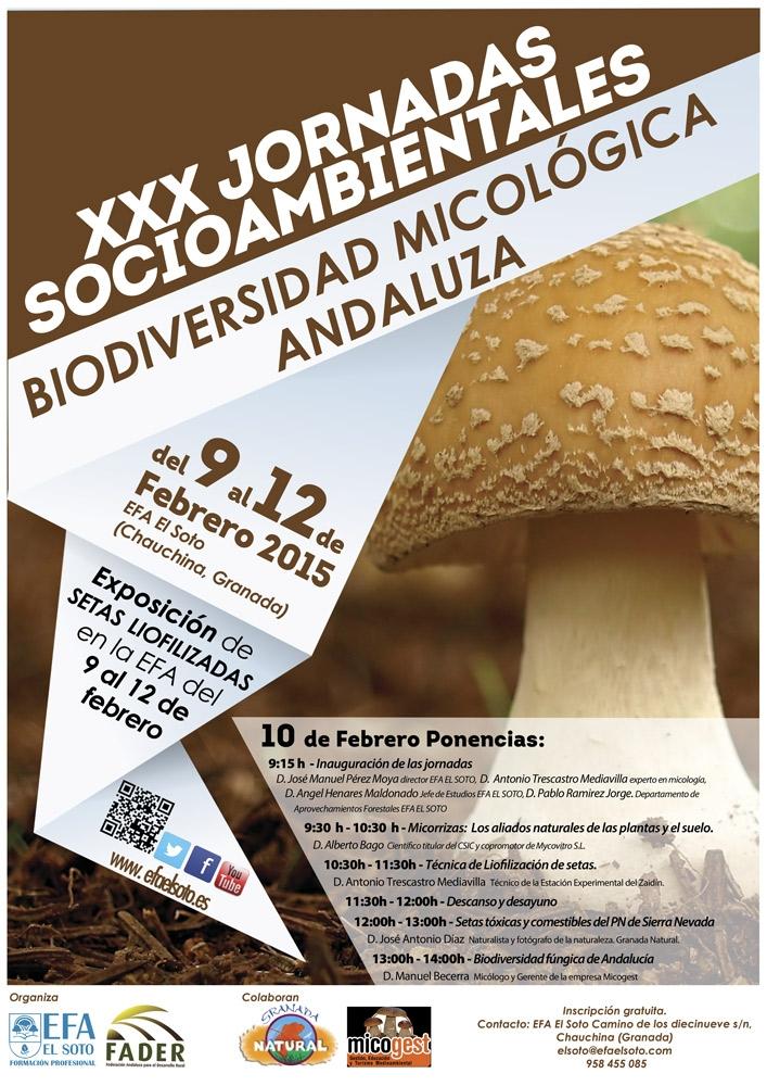 Efa_Cartel_XXXJornada_Biodiversidad_micologica_BR